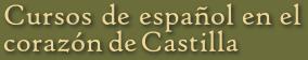 Cursos de lengua y cultura españolas en el corazón de Castilla (España)